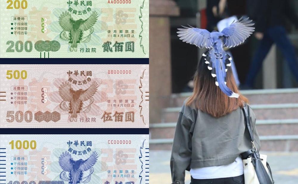 五倍券紙本封面是牠!國寶台灣藍鵲「狂巴頭」特性再掀一波話題