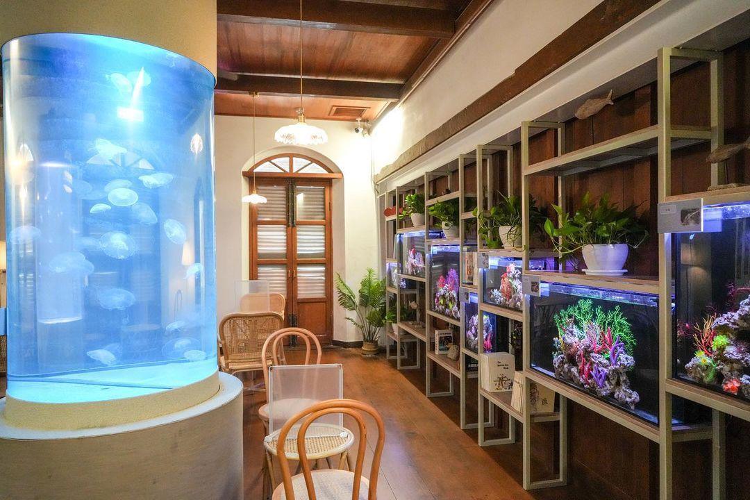 百年古蹟引進水母咖啡廳!台南安平唯一「德式洋行」重新營運多了新亮點
