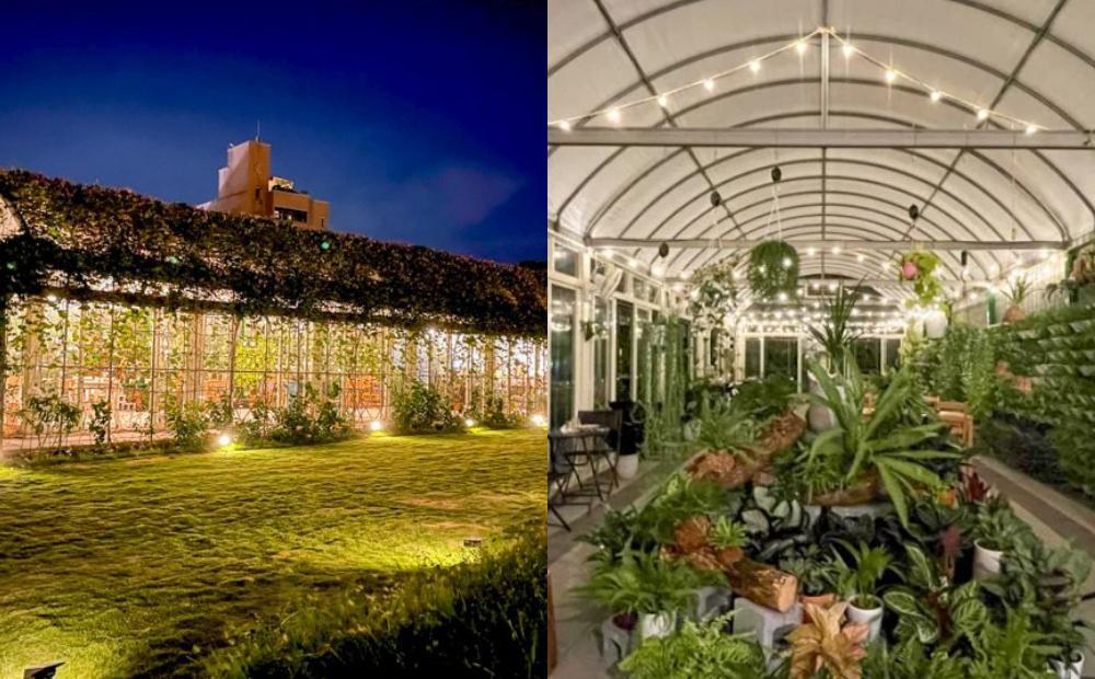 桃園超隱密「溫室咖啡廳」地圖搜不到!整間種滿牽牛花、夜景玻璃屋超夢幻