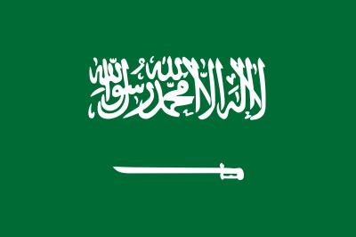 2018世界盃球隊介紹:沙烏地阿拉伯
