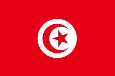2018世界盃球隊介紹:突尼西亞