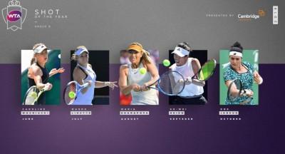 網球》需要台灣球迷支持 謝淑薇入選WTA年度10大好球