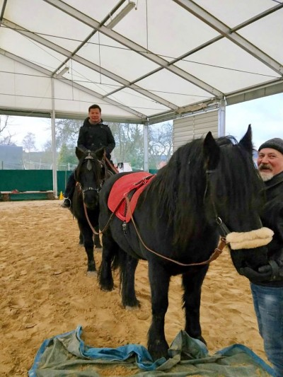 馬術》利用駕馭馬匹學企業管理 BMW總裁也受用
