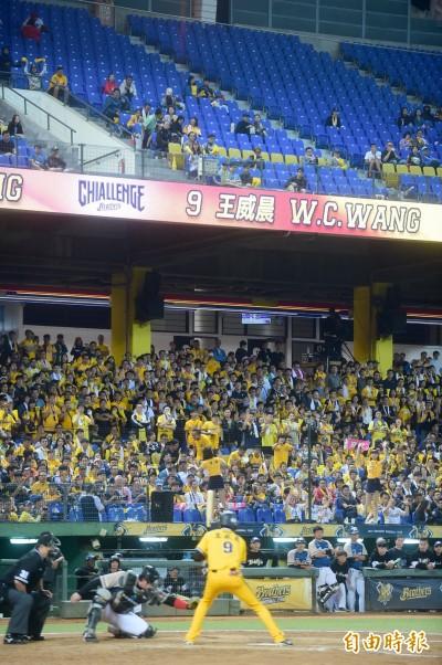 台灣大賽》G3票房冷颼颼  兄弟洲際主場首戰觀眾不到6成滿