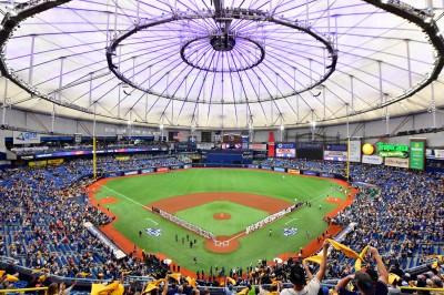 MLB》光芒隊有限度開放主場練球 教頭歡迎球員們歸隊