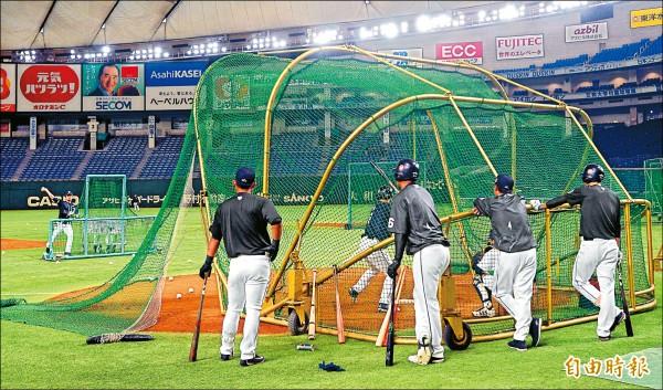 台灣隊因為人手不足,打擊練習時只能同在一個打擊籠。 (特派記者林正堃攝)