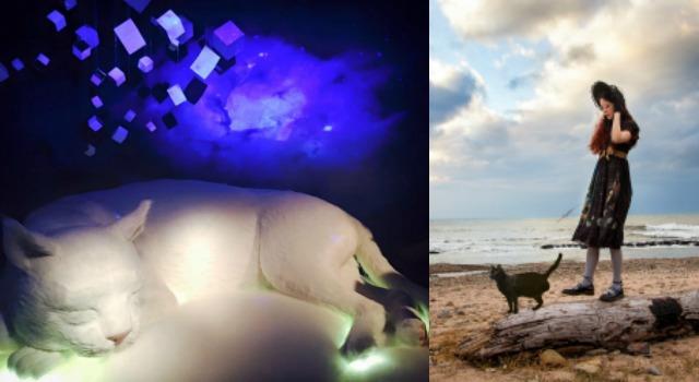 會呼吸的大貓!「貓的小宇宙攝影展」用3D特效帶你走入銀河星球探險啦