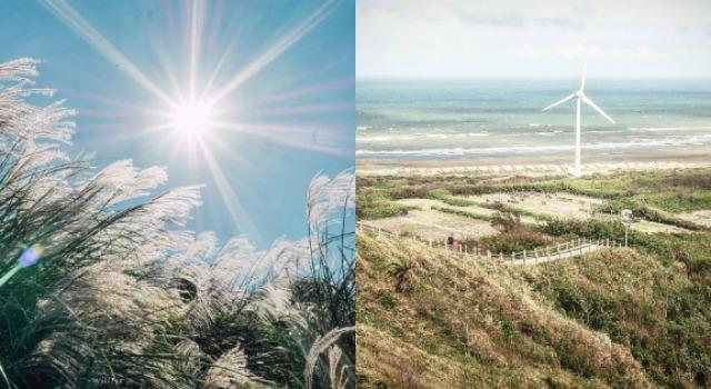 白茫茫秋冬美景!精選4大景點,被夢幻芒草環繞的季節到啦!