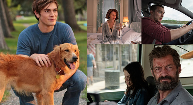 本週新片搶先看!《為了與你相遇》感人的情感故事,讓狗奴們淚灑電影院