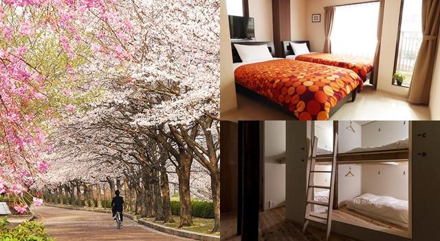 住到都不想回家了!網友票選櫻花季CP值最高「京都背包客旅館」TOP5!