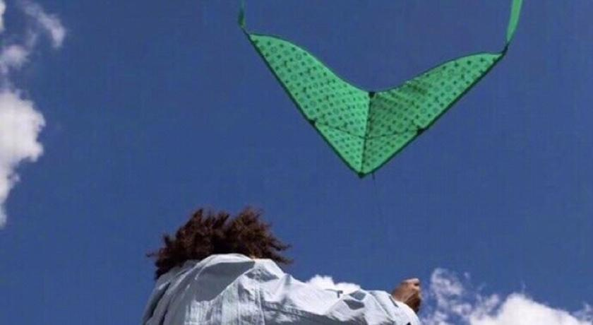 超過台幣 30 萬 LV 風箏誰敢放?網爆笑:要是斷線就 GG 了...