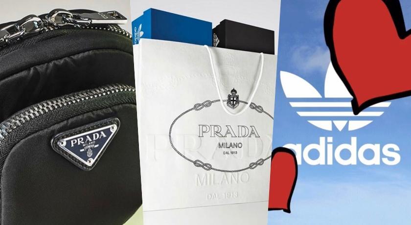 重磅合作來了!Prada宣布將聯手adidas推出聯名系列