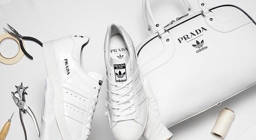 首波Prada for adidas聯名來了!超限量Superstar台灣只有這裡買得到