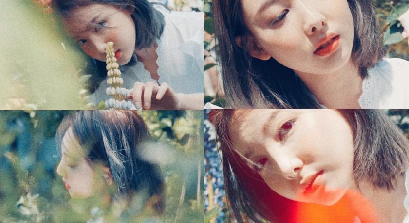 TWICE 迷你 9 輯預告曝光,娜璉變身花仙子粉絲直呼:最美瞬間!