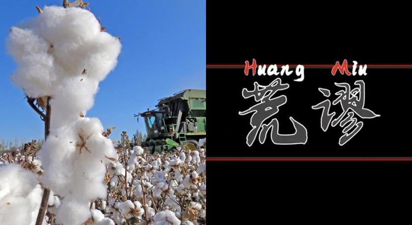 (有片)小粉紅氣到為「新疆棉花」寫 RAP!網笑:就是自爽