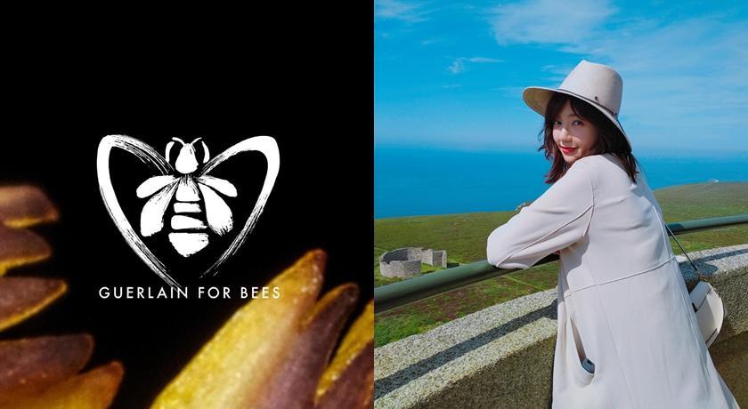520動動手指為世界加點「蜜」!跟小蜂農會長郭雪芙一起轉發救蜜蜂