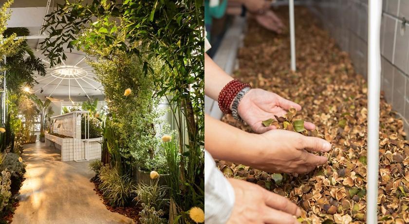 滿滿植栽的展覽藏著夢幻「咖啡瓶子」!還能聽到植物在說話