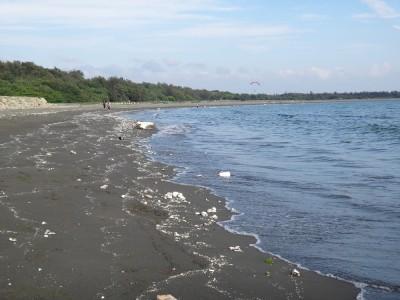 自由開講》海岸上的雪線:保麗龍漁業廢棄物