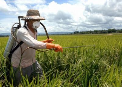 科技農報》殺蟲劑添加帶電分子,解決農藥噴灑過量問題