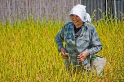 科技農報》農業行銷這樣做!日本研究顯示:認識農民,能吸引大眾主動參與食農教育