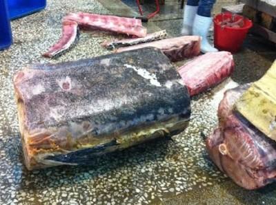 地理眼》在台北城散步:夜半亮起的萬華魚批發市場