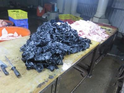 韋恩的食農生活》豬頭皮工廠使用瀝青脫毛