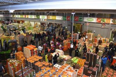Lin bay 好油》費用85歐元的北農市場「考察」行程