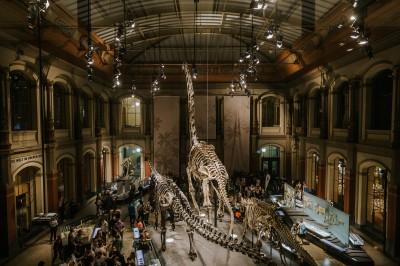 歐洲之心》藝術徹夜未眠:柏林博物館長夜與博物館島