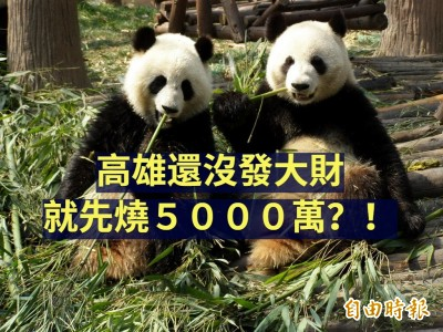 自由開講》經濟100分,政治0分的韓市長就別再亂花錢養統戰貓熊了吧!