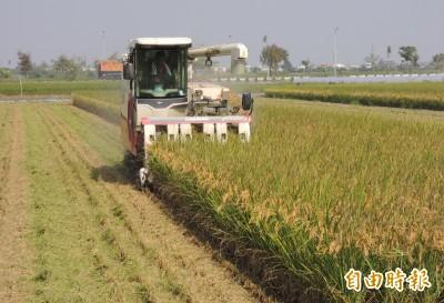 文青別鬼扯》別執著於糧食自給率了,農業不是只有雜糧穀物:敬答郭華仁老師