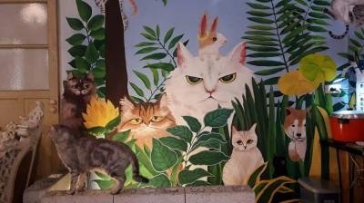 芭樂人類學》貓奴也瘋狂 貓咖啡歷史與空間文化
