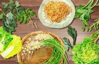 東亞漫遊》韓國的春天野菜盛宴