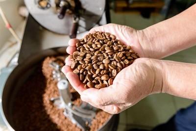 鬼王來鬼扯》台灣咖啡產業之巴西很重要(一)