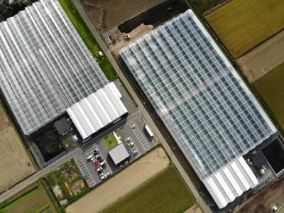 一級嘴砲》荷蘭血統的青農育成基地:誠和TomatoPark
