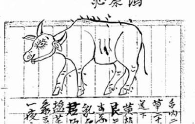 歷史學柑仔店》漫談動物「去勢」的歷史