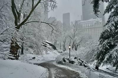 紐約地途》中央公園雪中漫步