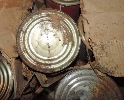 鬼王來鬼扯》黑心回收罐頭:環保人士的三觀不碎也難