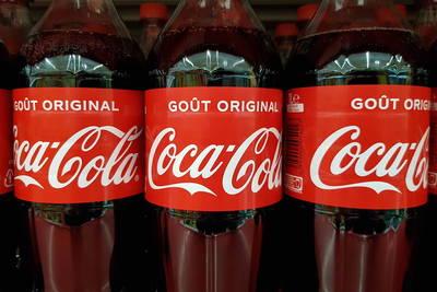 研之有物》製作可樂和毒品的天然原料!管制作物「古柯」的馴化起源研究