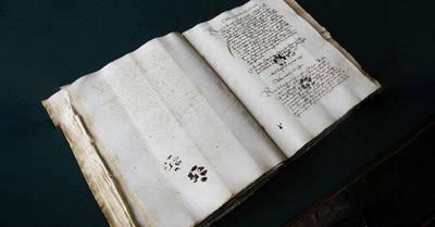 即食歷史》中世紀的貓主子一樣調皮