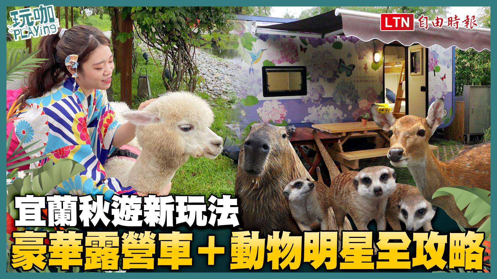 宜蘭秋遊新玩法 豪華露營車+動物明星全攻略